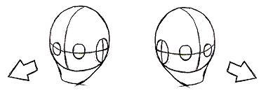 顔(左右)