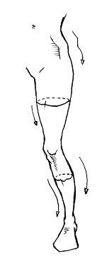 足の描き方(正面)