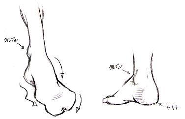 足の描き方(基礎)