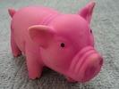 ペットトイ 豚のおもちゃ