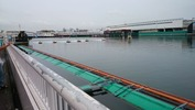 ボートレース尼崎2014年8月2日6R