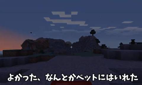 マイクラ開拓画像 (1)