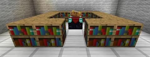 エンチャントと本棚並べ方画像 (2)
