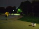 暗くなっちゃった〜D8522_081026