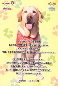 daisukekun-card2