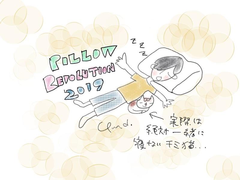 pillow_revolution