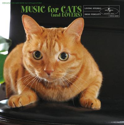 猫と音楽の休日_J
