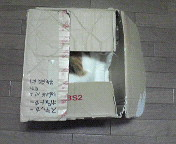 boxclose