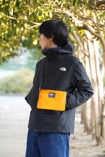 DSC02885_orange
