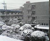 2006snow