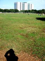 walkpark
