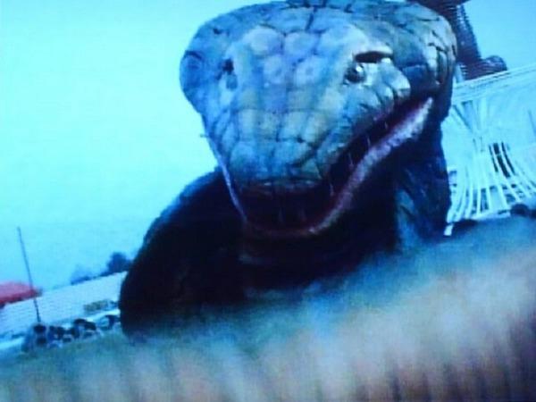 ヘビ獣人⑥
