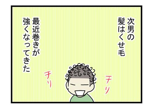 サイババ1