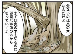 index (16)