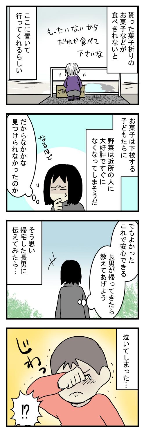 だいこん11-3