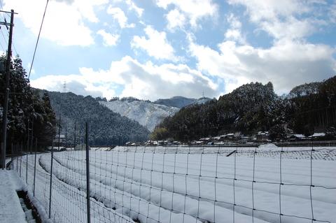 年始の雪 023
