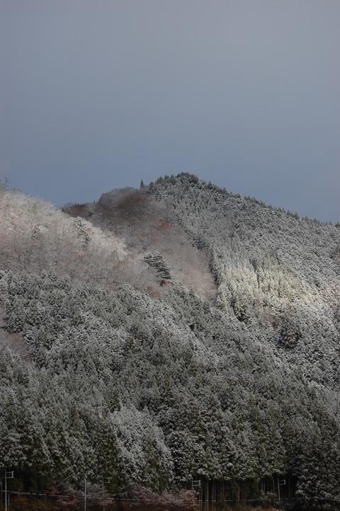 parc5cm 初雪 011
