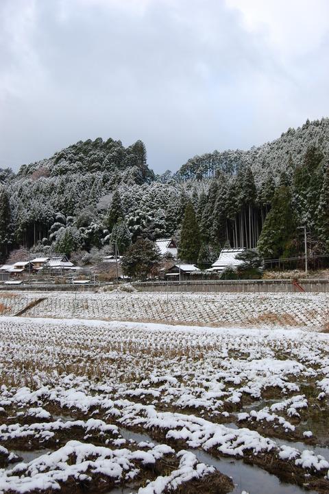 parc5cm 初雪 014