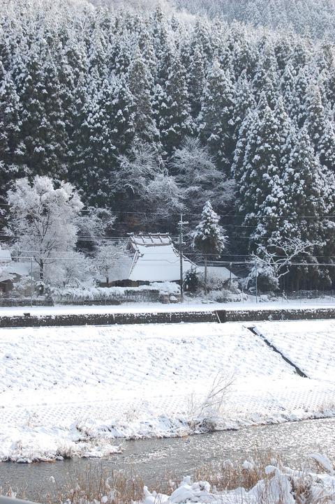 年始の雪 020