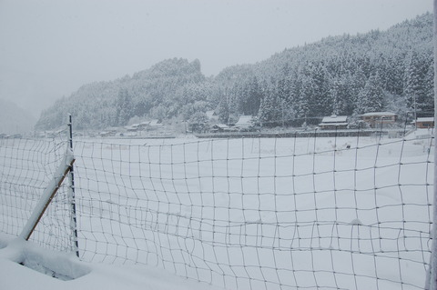 雪 008
