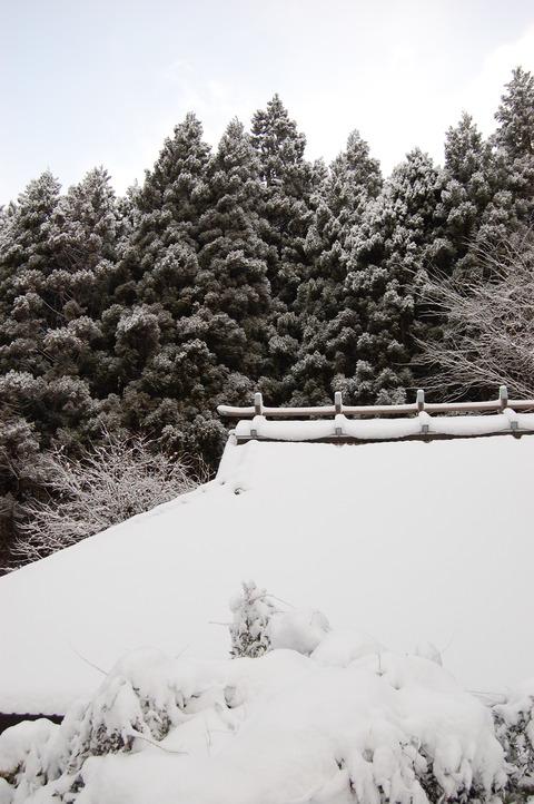 雪景色 007