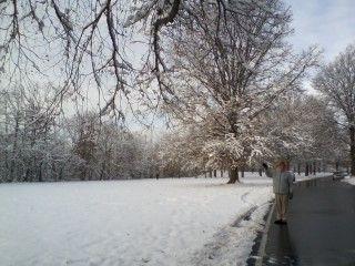 雪景色散歩道の
