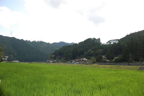 DSC_0012 (2)