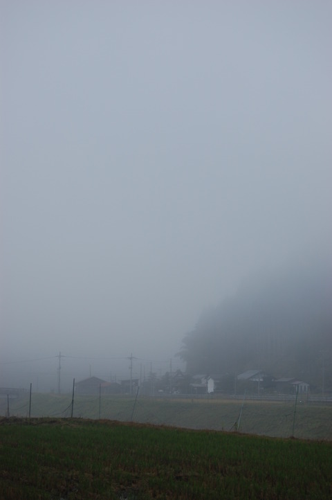 朝霧 004