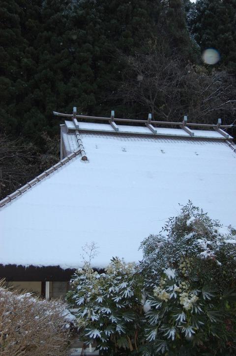 クリスマス寒波 009
