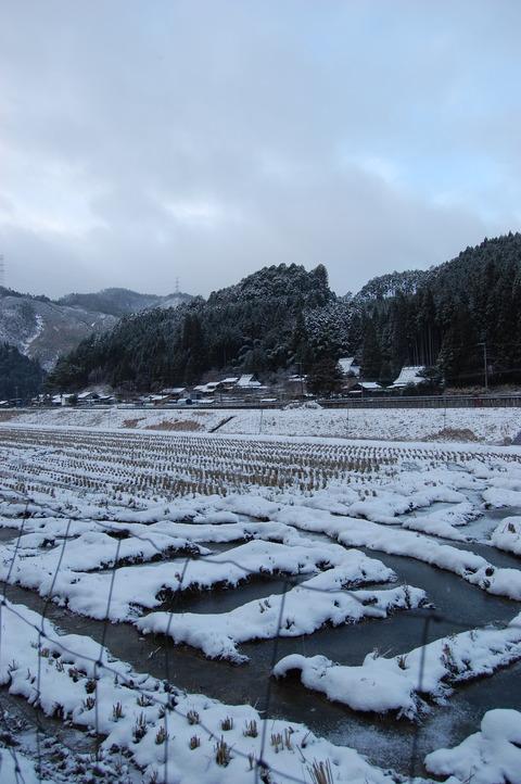 クリスマス寒波 006