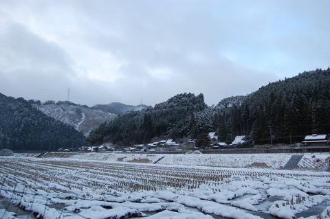 クリスマス寒波 004