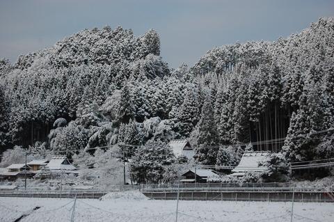雪 013
