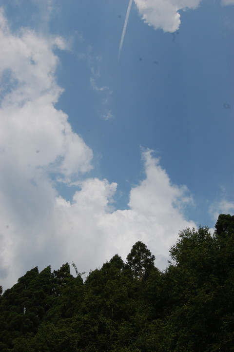 DSC_0006 (1)