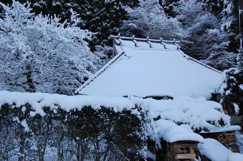 年始の雪 012