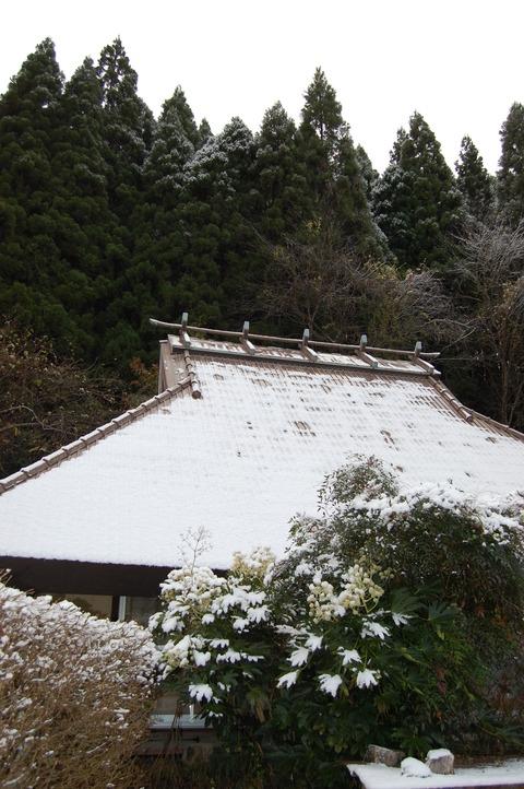 parc5cm 初雪 018