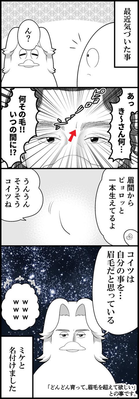 眉間のミケちゃん