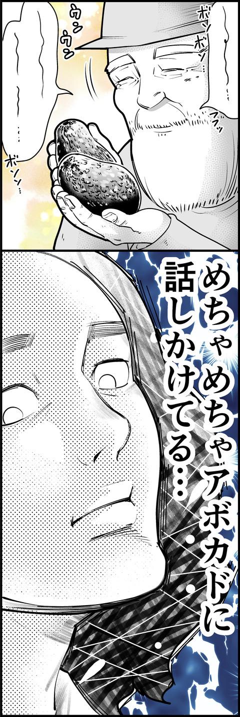 アボカドおじさん②mini