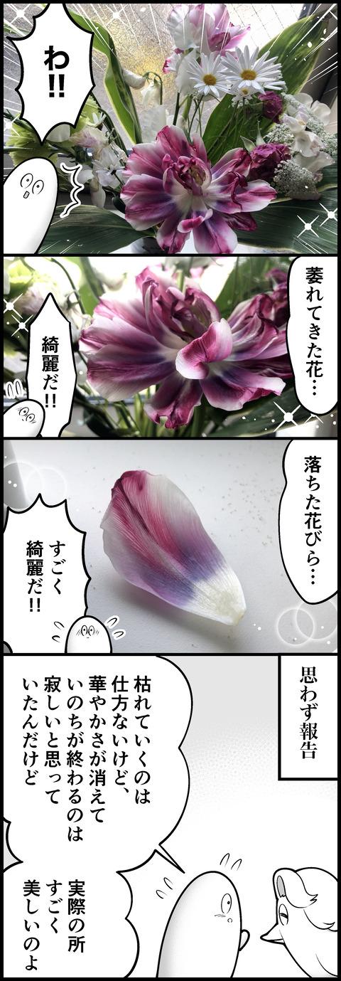 枯れても良い花②