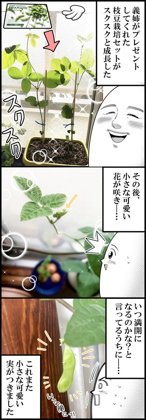 枝豆食べたよ