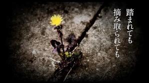 花は咲く2.