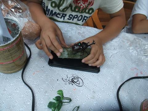 昆虫標本作り