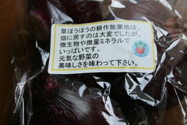 長崎県波佐見町、峠有機百笑会の元気赤たまねぎ