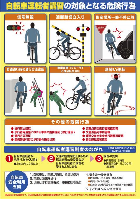 kousyu_leaflet