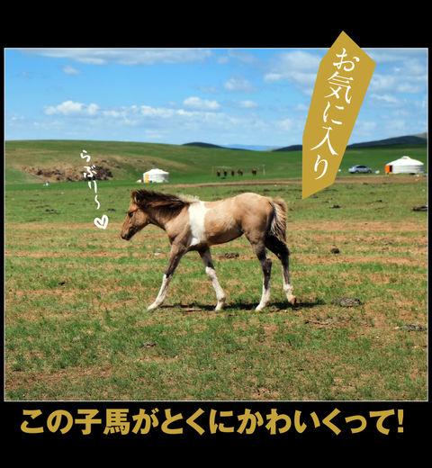 mongolia-08-035