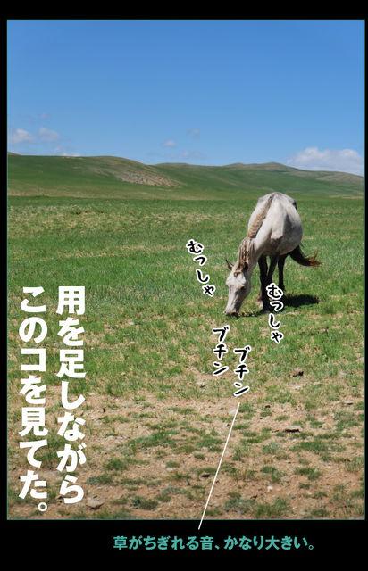 mongol-04-003