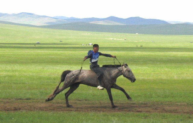 Naadam_rider_1