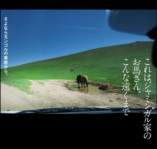 mongol-12-004