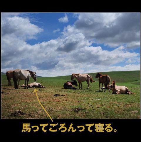 mongolia-08-023