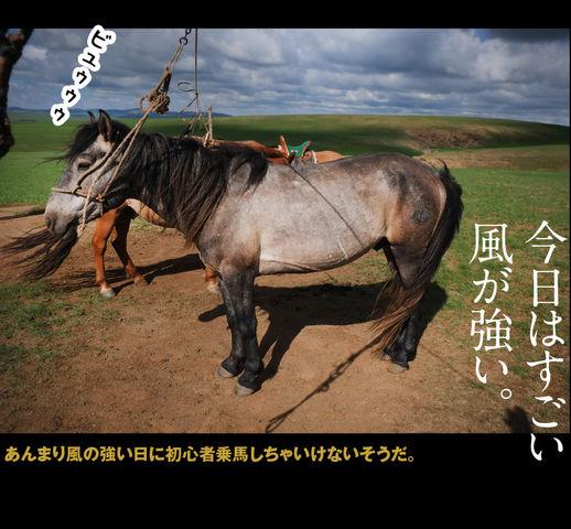 mongolia-08-004