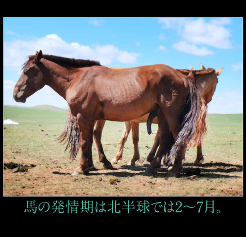 mongol-04-006